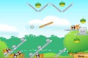 Spelletje Eekhoorn Lanceren Spelen