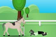 Spelletje Paard Rijden Spelen