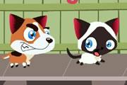 Spelletje Vluchtende Kat Spelen